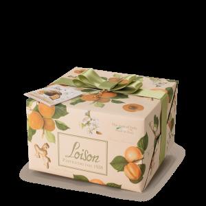 Frutta e Fiori Panettone Albicocca e Zenzero